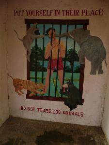 When animal murals attack...