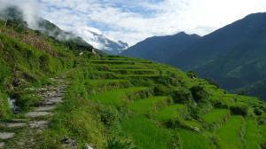 Gandruk to Nayapol
